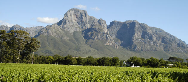 Top Things to Do in the Western Cape - South Africa