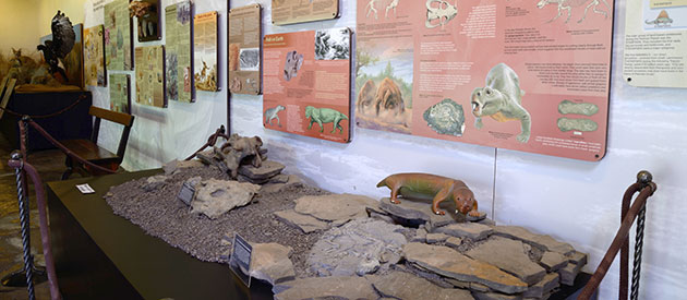 The Interpretive Centre at the Karoo National Park : SANParks
